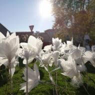"""Mākslas skolas akcija """"100 ziedi Latvijai"""""""